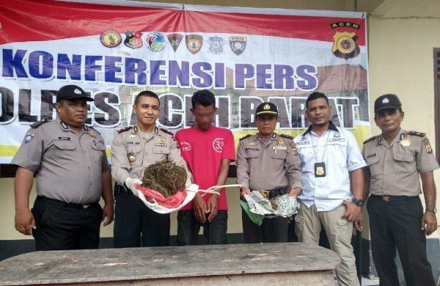 Kapolsek Kaway XVI, Aceh Barat, Ipda Andri Jusman, memperlihatkan seorang tersangka berinisial M yang diduga terlibat sebagai pengedar ganja di kawasan itu. (Foto/Dedi Iskandar)