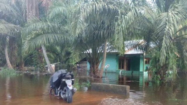 Banjir Desa Lhok Raya, Kecamtan Trumon Tengah, Aceh Selatan (Foto/Ist)