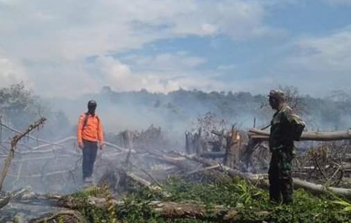 Lahan gambut milik warga Desa Babah Dua Kecamatan Darul Hikmah, Aceh Jaya, seluas 10 hektare, Minggu (6/1/2018), hangus terbakar dan sampai saat ini kobaran api masih belum bisa dipadamkan secara menyeluruh.(Foto/zammil)