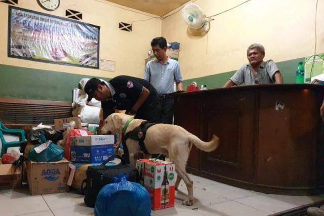 BNNP Aceh mengerahkan dua anjing pelacak periksa barang bawaan dan kiriman di sejumlah terminal wilayah Kota Banda Aceh. (Foto/Ist)