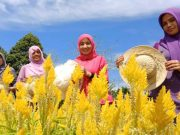 Para pengunjung tampak menikmati suasana di taman Spot Selfie di Aceh Jaya. (Foto/Zammil)