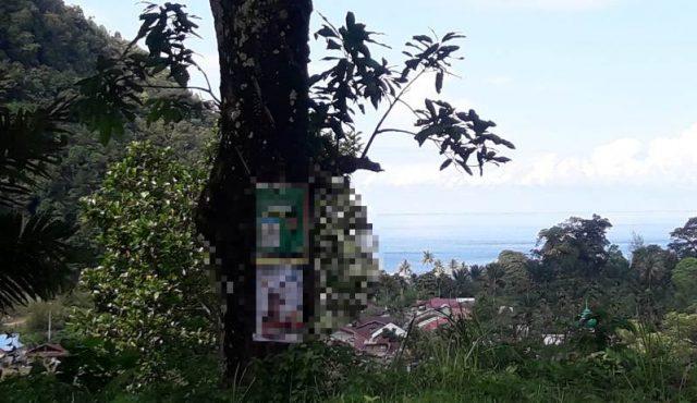 Pemasangan APS caleg di perpohonan menggunakan paku di kawasan jalan pergunungan Tapaktuan.(Foto/Faisal)