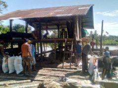 Kilang sagu yang dikelola Berkat Yakin Mandiri di Kedai Kandang, Kluet Selatan, Aceh Selatan. (Foto/Faisal)