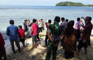 Masyarakat tampak sedang menyaksikan paus yang terdampar di pesisir laut Lhok Keutapang, Tapaktuan, hebohkan warga, (31/01/2019). (Foto/Faisal)